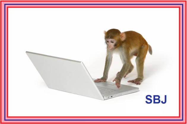 monkey_typing_jonk1